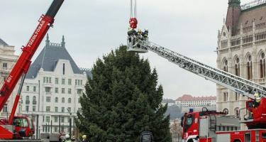 Felállították az ország karácsonyfáját az Országház előtt