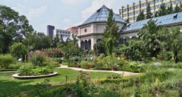 Újra kinyit a Füvészkert Budapesten